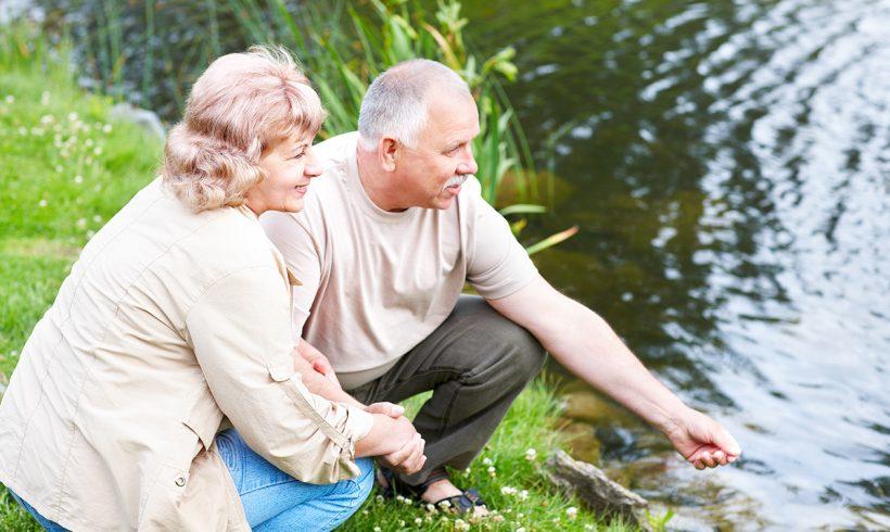 Summer Activity Ideas for the Seniors